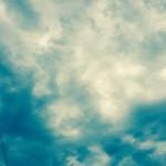 曇りの日が続きますが…