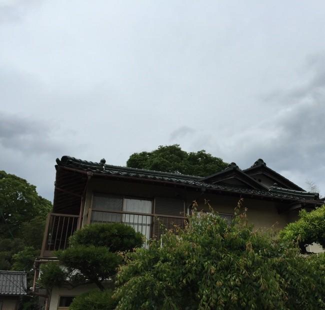 高浜町のふたつの家。リフォーム相談と設計打合せ。