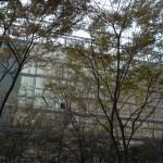 梅田茶屋町界隈