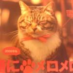 猫にメロメロ。
