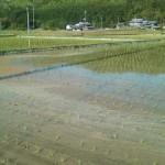 今日は京丹波町。
