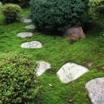 現地調査 ー 愛知県一宮市 木造住宅の大規模リフォーム